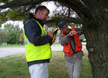 Wright-Patterson Air Force Base Urban Tree Inventory and Assessment